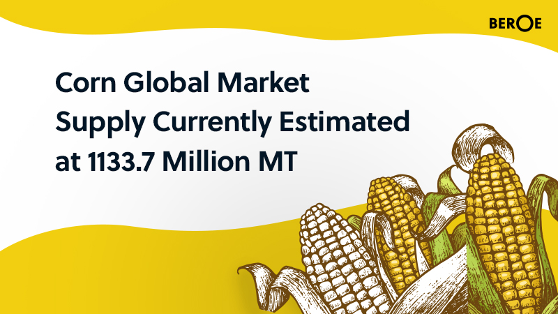 Corn Global Market Supply Currently Estimated at 1133.7 Million MT, Says Beroe Inc