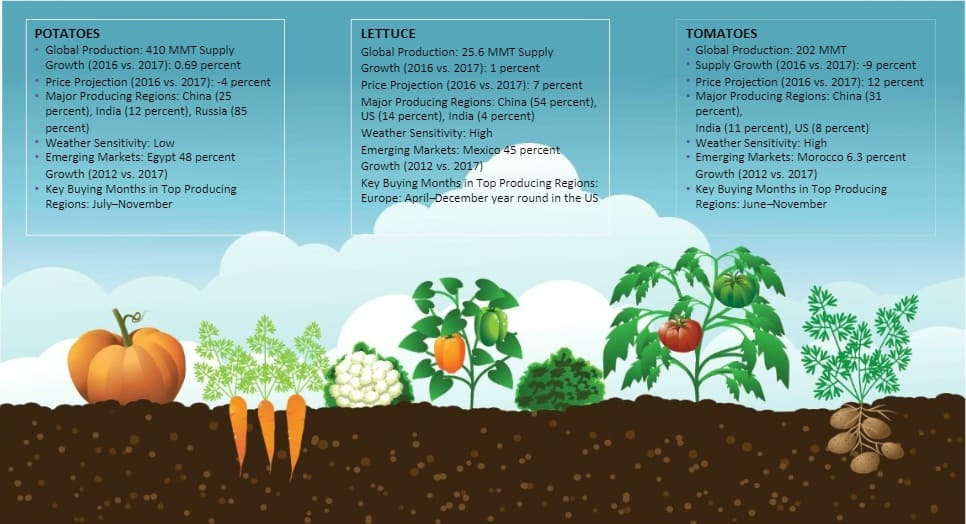 vegetables-global-market-size