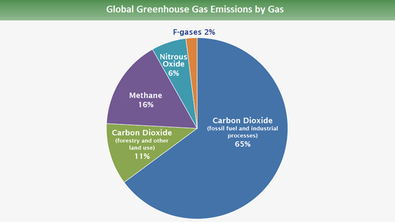 Global Green House Gas Emissions By Gas